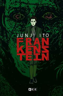 Frankenstein (Flexibook 192 pp) #