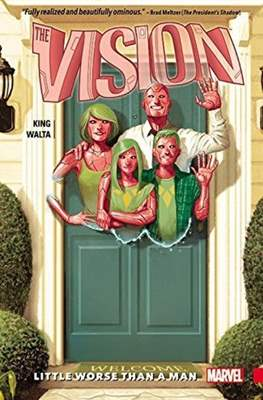 The Vision (Softcover) #1