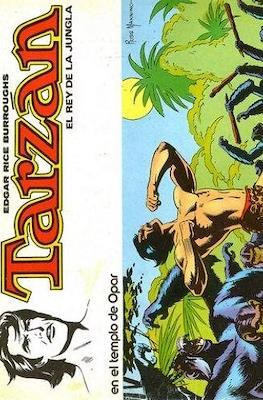 Tarzán: El rey de la jungla (Rústica) #2