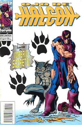 Ojo de Halcón (1994-1995) (Grapa. 17x26. 24 páginas. Color) #2