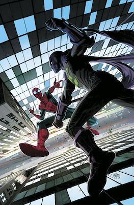 Amistoso Vecino Spiderman (Grapa) #4