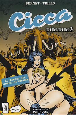 Cicca Dum-Dum #3