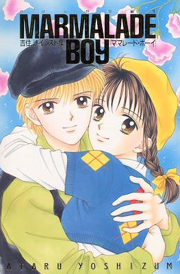 Marmalade Boy Art Book
