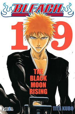 Bleach (Rústica) #19