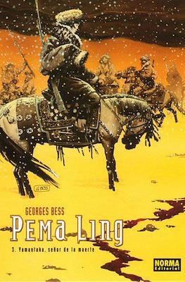 Pema Ling #3