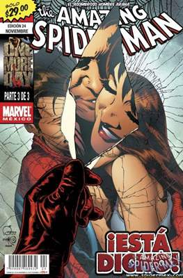 The Amazing Spider-Man (2005-2013) (Grapa) #24