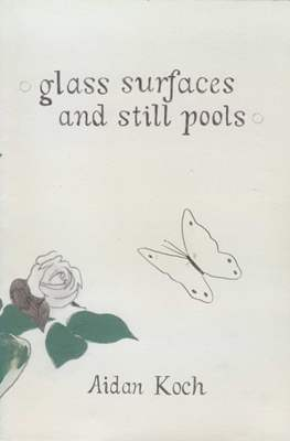 glass surfaces and still pools
