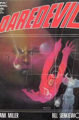 Marvel Graphic Novel (Softcover) #24