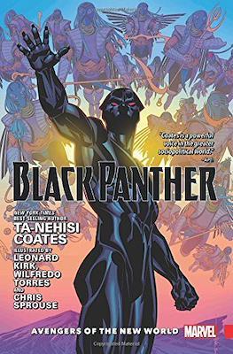 Black Panther by Ta-Neishi Coates #2