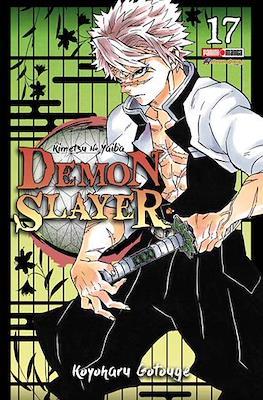Demon Slayer: Kimetsu no Yaiba #17