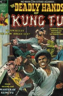 Deadly Hands of Kung Fu Vol 1 #3