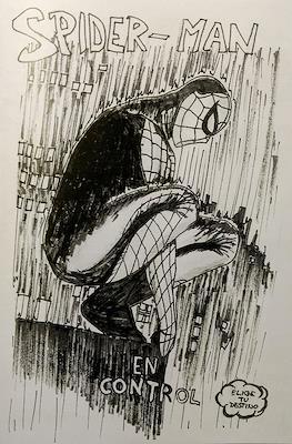 Elige tu destino - Spider-man: En control (Grapa) #