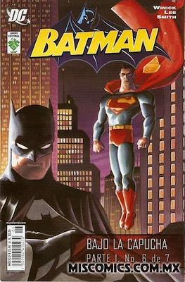 Batman. Bajo la capucha parte 1 #6