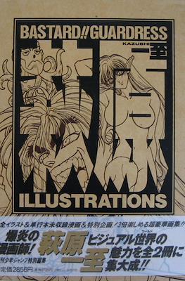 Bastard!! Guardress Illustrations
