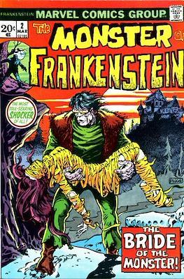 The Frankenstein monster (Grapa) #2