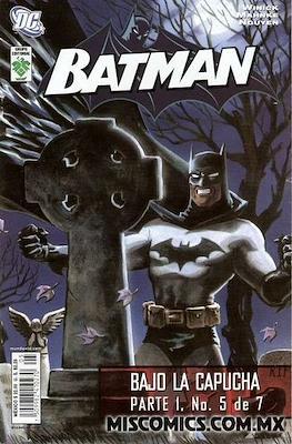 Batman. Bajo la capucha parte 1 #5