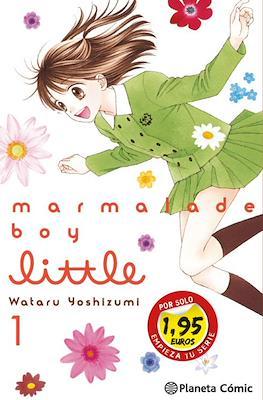 Marmalade boy little