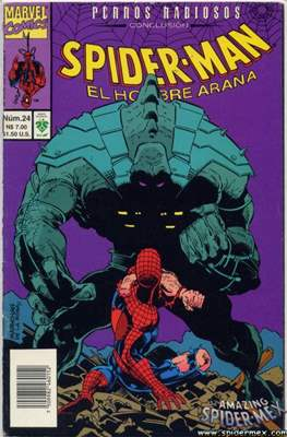 Spider-Man Vol. 1 (1995-1996) (Grapa) #24