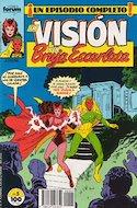 La Vision y la Bruja Escarlata (1988-1989) (Grapa 24 pp) #5