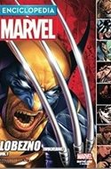 Enciclopedia Marvel (Cartoné) #8