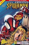 The Amazing Spider-Man (2005-2013) (Grapa) #2