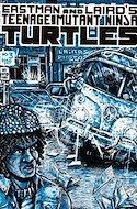 Teenage Mutant Ninja Turtles Vol.1 (Comic-book) #3