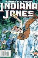 Indiana Jones (Grapa 64 pp) #8
