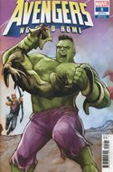 Avengers: No Road Home (Variant Cover) (Comic Book) #5