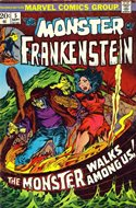 The Frankenstein monster (Grapa) #5