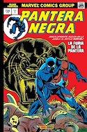 Pantera Negra. Marvel Gold (Omnigold) (Cartoné) #1