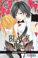 Black Bird (Rústica con sobrecubierta) #1