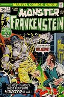 The Frankenstein monster (Grapa) #1
