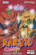 Naruto #44